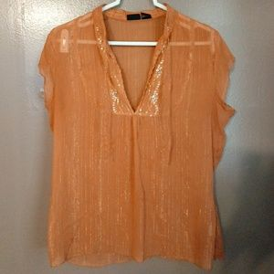 Gold and Pumpkin Sheer Blouse by Vanity